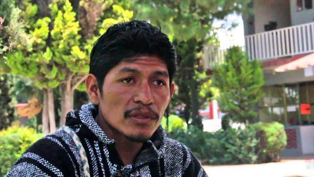Indigenous eco-activist slain in Morelos, Mexico